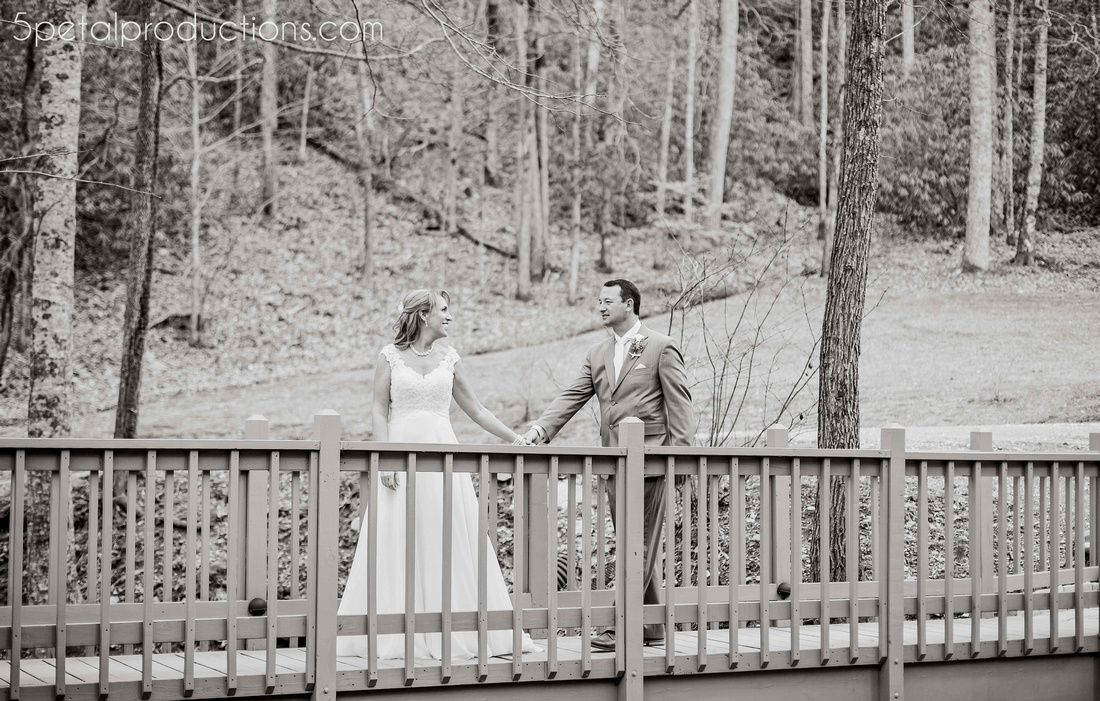 Hawkesdene House Weddings Western NC Weddings Asheville Weddings0036 copy