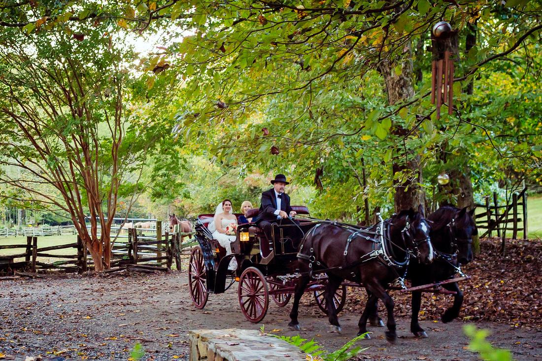 Neverland Farms Wedding Photogaphy0030